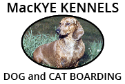 MacKye Kennels | Dog and Cat Boarding