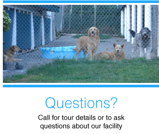 Questions? | Call for tour details or to ask questions about our facility | dogs